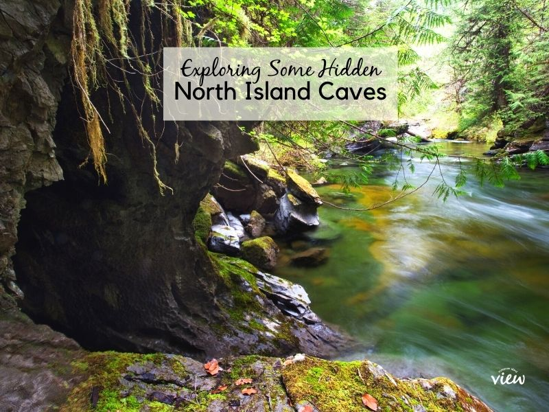 Exploring some hidden north island caves