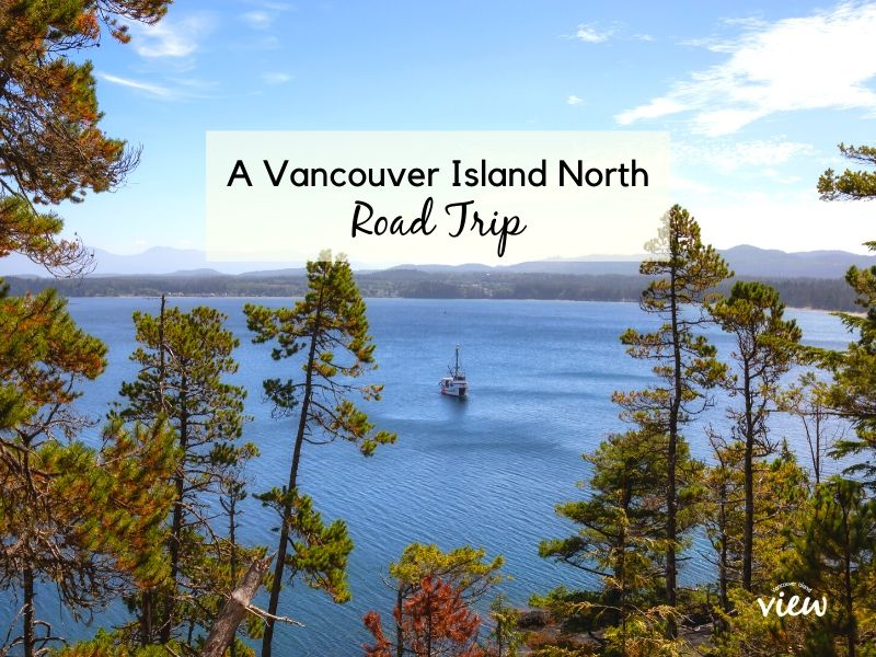 An Epic Vancouver Island North Road Trip