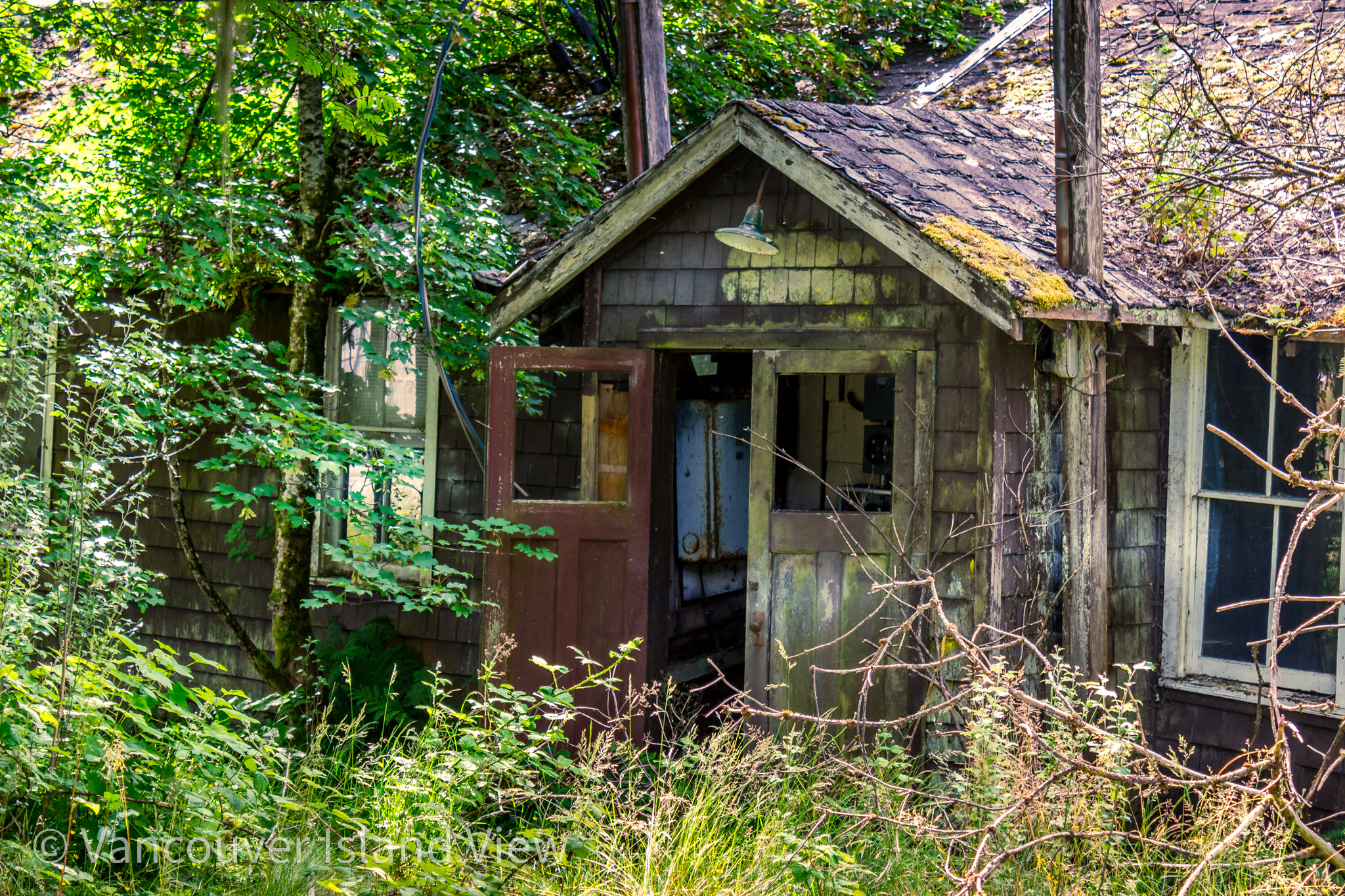 abandoned house in Coal Harbour on Vancouver Island North