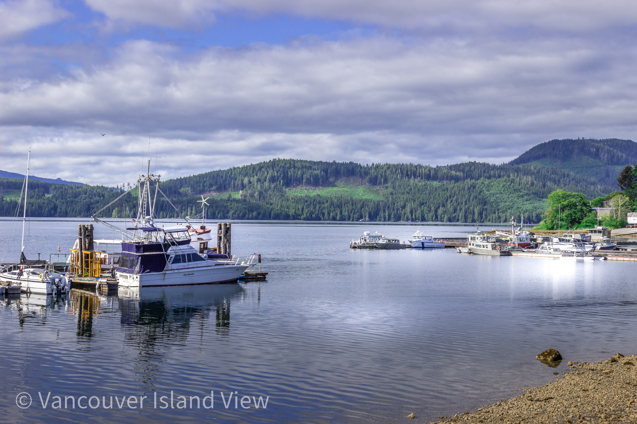 View from Coal Harbour. Vancouver Island View